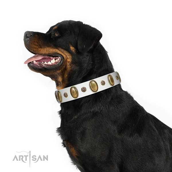 Daily use soft natural genuine leather dog collar with decorations