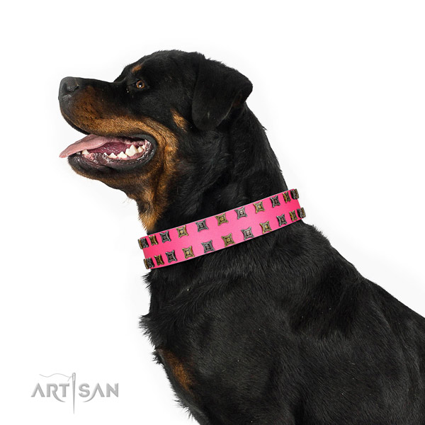 Best quality full grain genuine leather dog collar with decorations for your dog