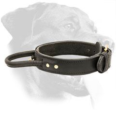 Leather Rottweiler Collar for Attack / Agitation Training