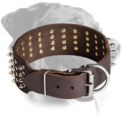 Leather Rottweiler Collar with Agressive Look