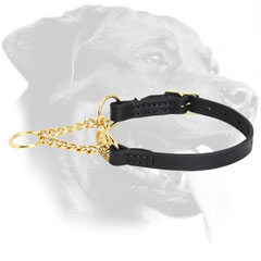 Leather Collar for Rottweiler Behavior Correction