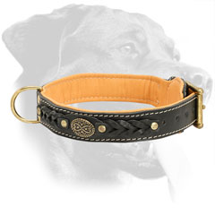 Braided Nappa Padded Leather Rottweiler Collar for Daily Walking