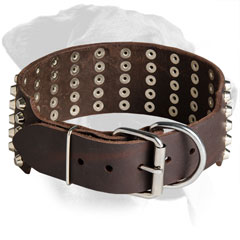 Leather Rottweiler Choke Collar Equipped with Brass Hardware