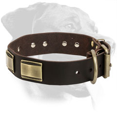 Leather Rottweiler Collar Equipped with Comfortable D-Ring