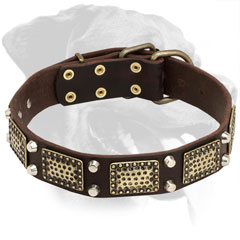 Everyday Walking Leather Rottweiler Collar
