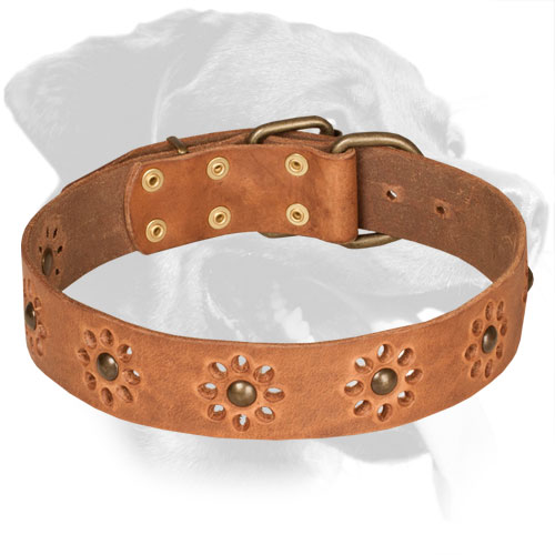 Flower Design Tan Leather Rottweiler Collar with Brass Studs