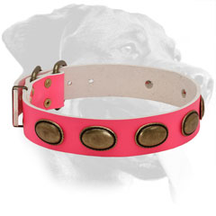 Genuine Leather Rottweiler Collar with Large Decorations