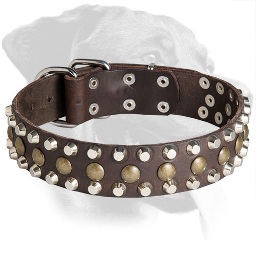 Leather Rottweiler Collar Decorated with Mixed Studs