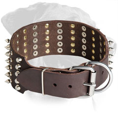 Rottweiler Collar Made of Leather with Nickel Buckle