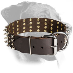 Leather Rottweiler Collar Equipped with Nickel Buckle
