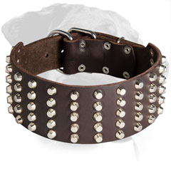 Leather Rottweiler Collar Decorated with Nickel Pyramids