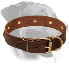 Leather Rottweiler Collar Equipped with Reliable Buckle