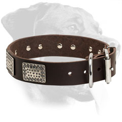 Rottweiler Collar Made of Leather Decorated with Rusty Plates