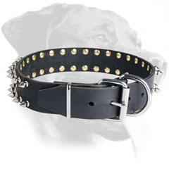 Spiked Leather Rottweiler Collar with Nickel Plated Hardware