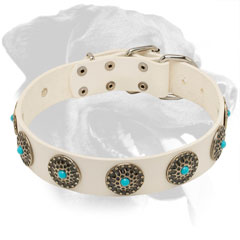 Gorgeous White Leather Dog Collar for Rottweiler with Silver Plated Circles