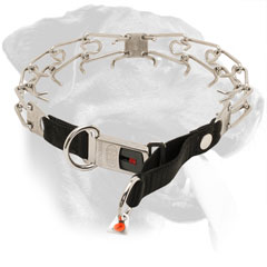 Stainless Steel Rottweiler Collar Equipped with Click Lock Buckle