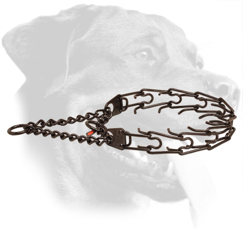 Stainless Steel Rottweiler Collar Equipped with Detachable Links