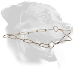 Steel Rottweiler Collar with Anatomical Shape