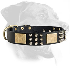 Rottweiler Leather Collar with plates, spikes and cones