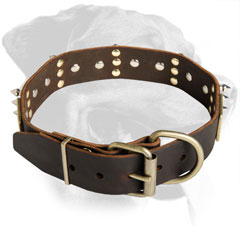 Rottweiler Breed Amazing Leather Collar with plates