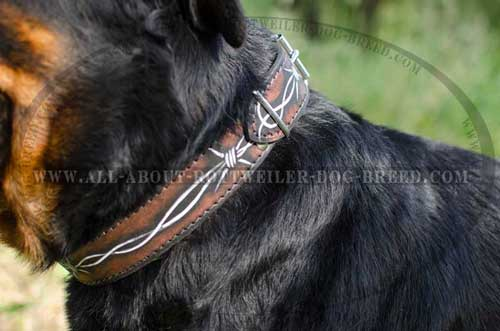 Rottweiler Leather Collar with Exclusive Painting
