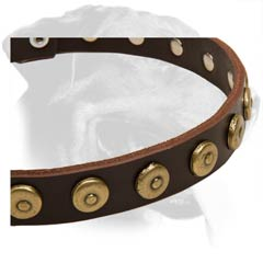 Cool Rottweiler Leather Dog Collar