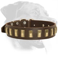 Riveted Rottweiler Leather Dog Collar