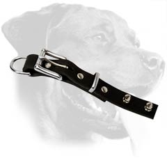 Top-quality Rottweiler Leather Dog Collar