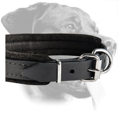 Rottweiler Adjustible Training Padded Leather Collar