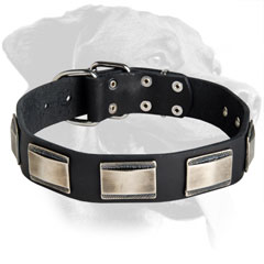 Rottweiler Elegant Design Leather Collar