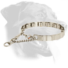Behavior Correction Rottweiler Neck Tech Collar Made of Stainless Steel