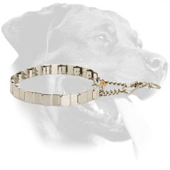 Stainless Steel Rottweiler Neck Tech Collar Equipped with Two O-Rings