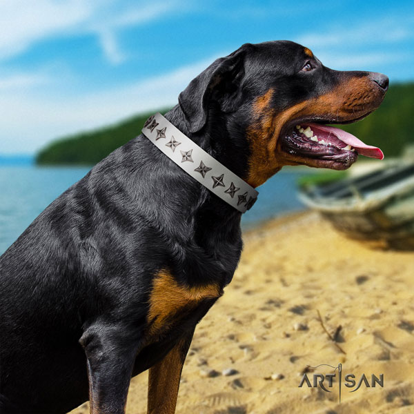 Rottweiler adjustable collar with amazing studs for your doggie