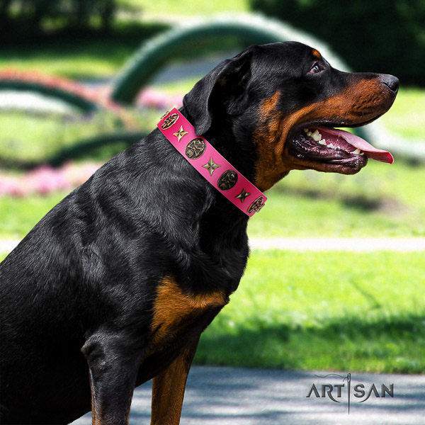 Rottweiler easy wearing full grain genuine leather collar for your lovely pet