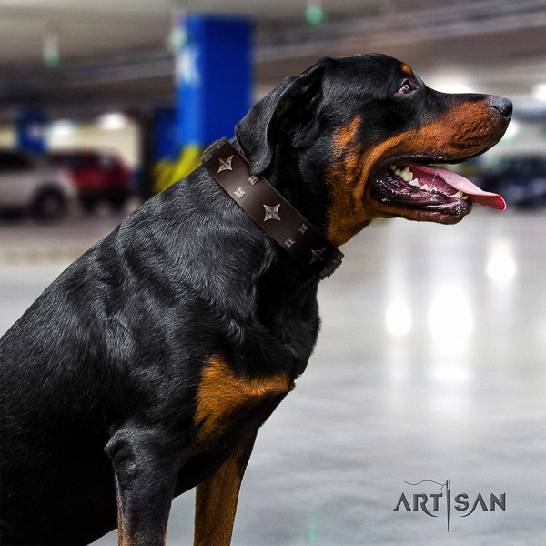Rottweiler basic training natural leather collar for your lovely canine
