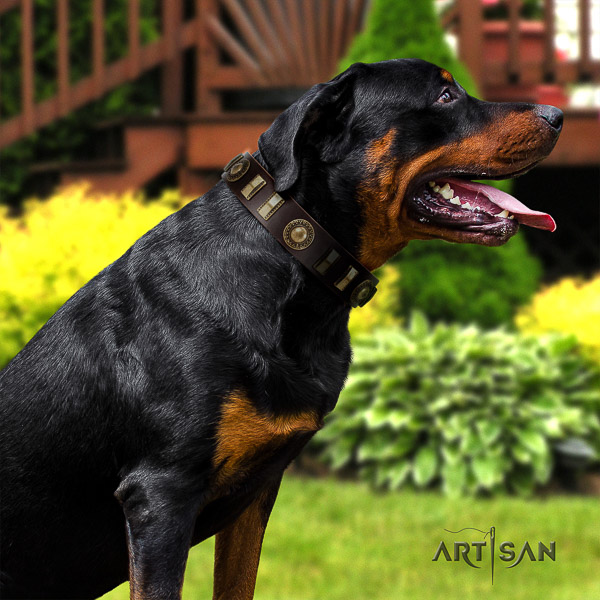 Rottweiler daily walking full grain natural leather collar for your stylish four-legged friend