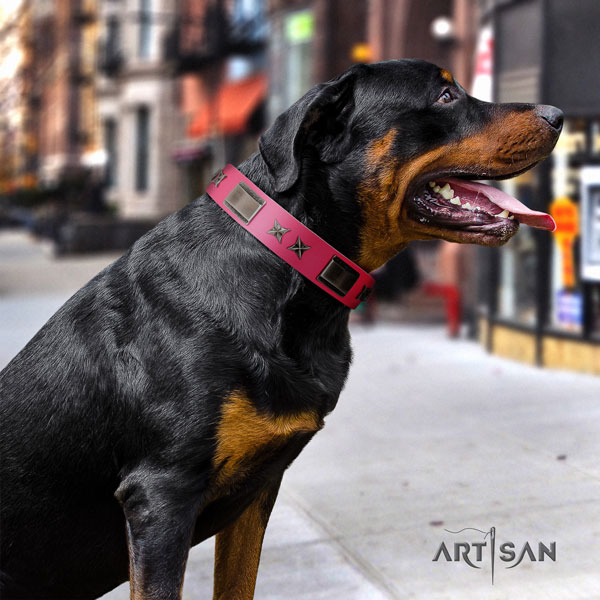 Rottweiler comfortable collar with stylish design studs for your canine