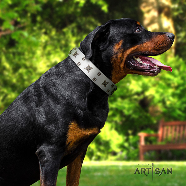 Rottweiler daily walking natural leather collar for your handsome doggie