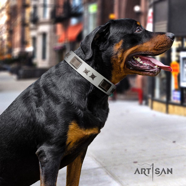Rottweiler handmade collar with significant studs for your canine