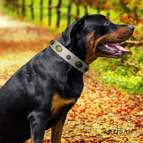 Rottweiler easy wearing full grain genuine leather dog collar with remarkable decorations