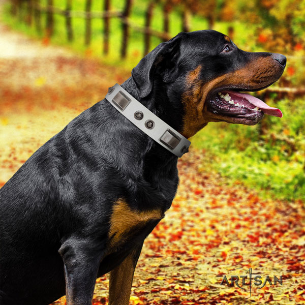 Rottweiler handcrafted collar with awesome studs for your doggie