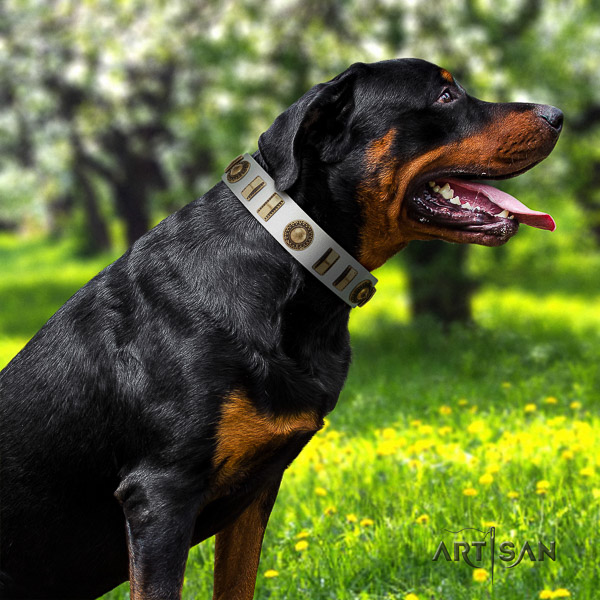 Rottweiler fancy walking natural leather collar for your beautiful doggie