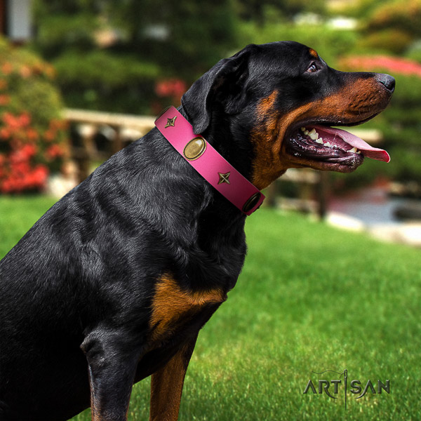 Rottweiler everyday walking genuine leather collar for your impressive doggie
