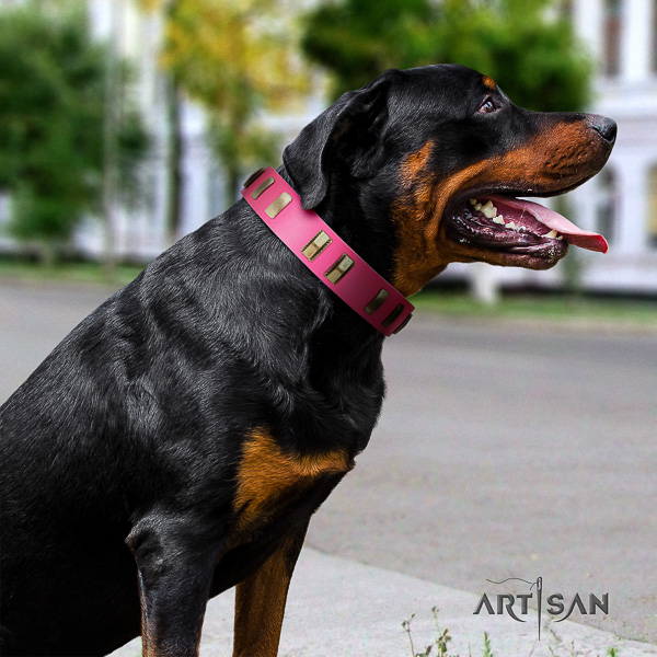 Rottweiler stylish walking full grain genuine leather collar for your beautiful canine