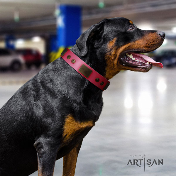 Rottweiler easy adjustable leather dog collar with amazing embellishments