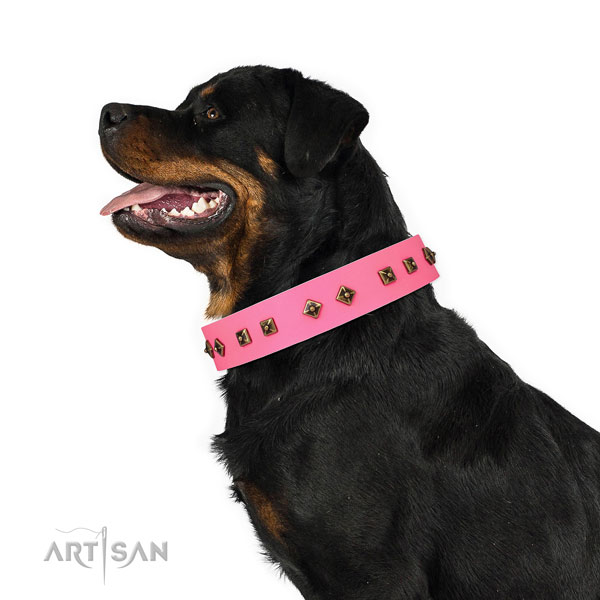 Rottweiler exquisite leather dog collar for handy use