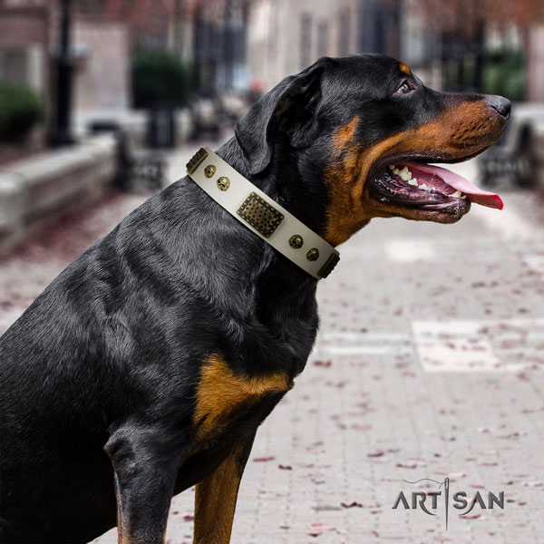 Rottweiler handcrafted full grain genuine leather dog collar with remarkable embellishments