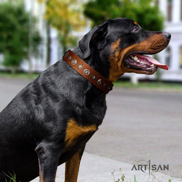 Rottweiler handmade collar with trendy decorations for your four-legged friend