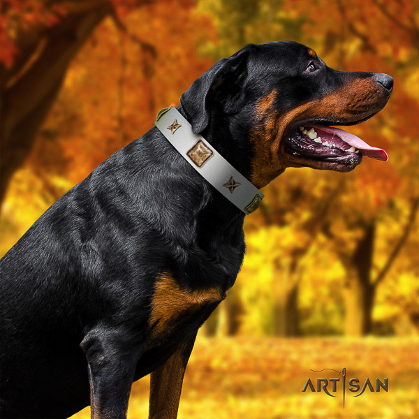 Rottweiler stylish walking full grain leather collar for your stylish doggie