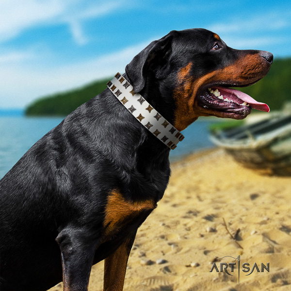 Rottweiler everyday walking full grain leather collar for your handsome four-legged friend